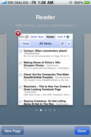 Safari multi page view